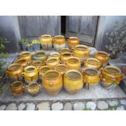confits pots with greens...