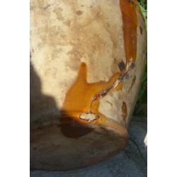 plongeon en terre vernissee  n842